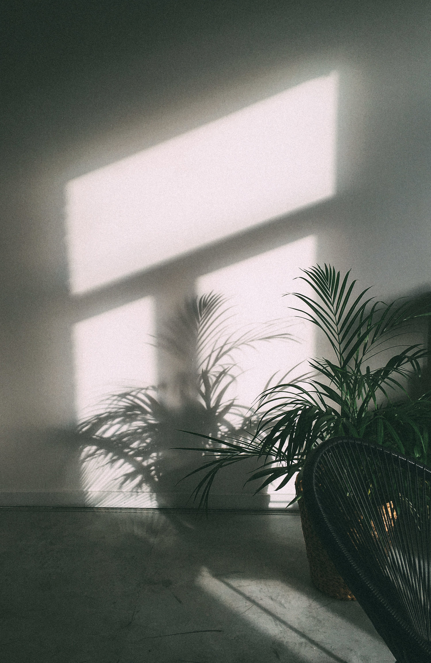 Sunshine on the white wall