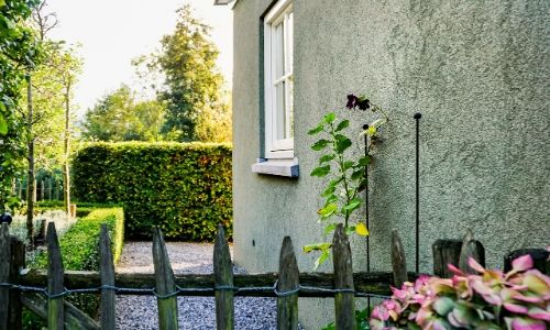 How to paint your exterior wall