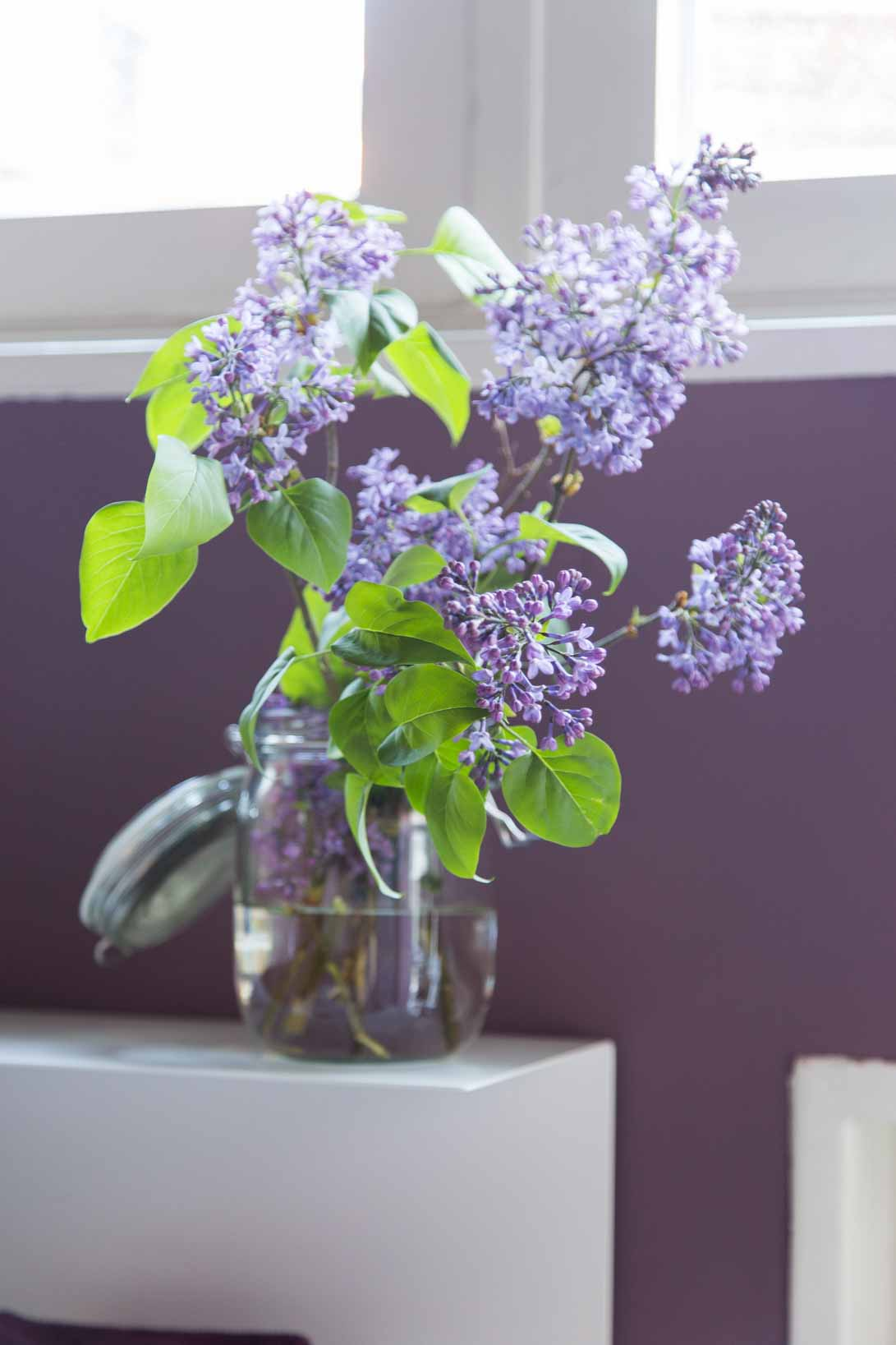 Waterbased chalk paint with natural pigments for a good indoor climate