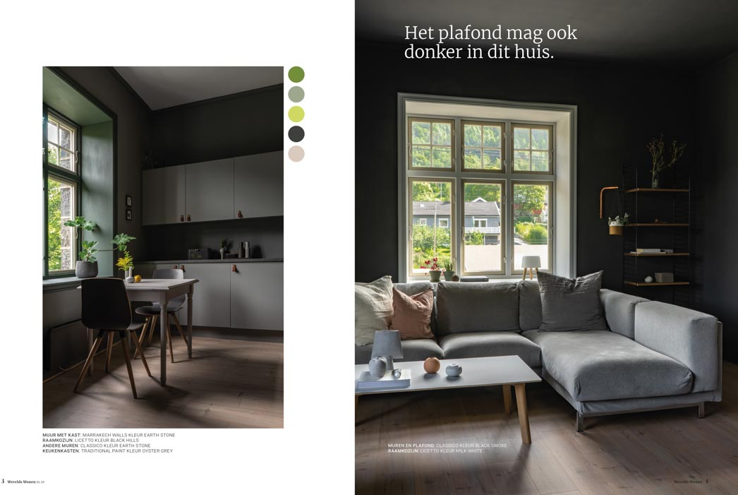 Kitchen and livingroom painted in dark tints, black and grey shades