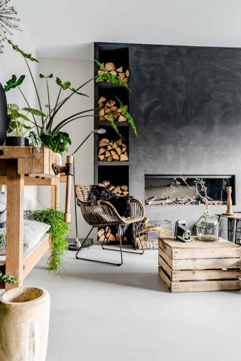 Article HOMIFY plants in the interior