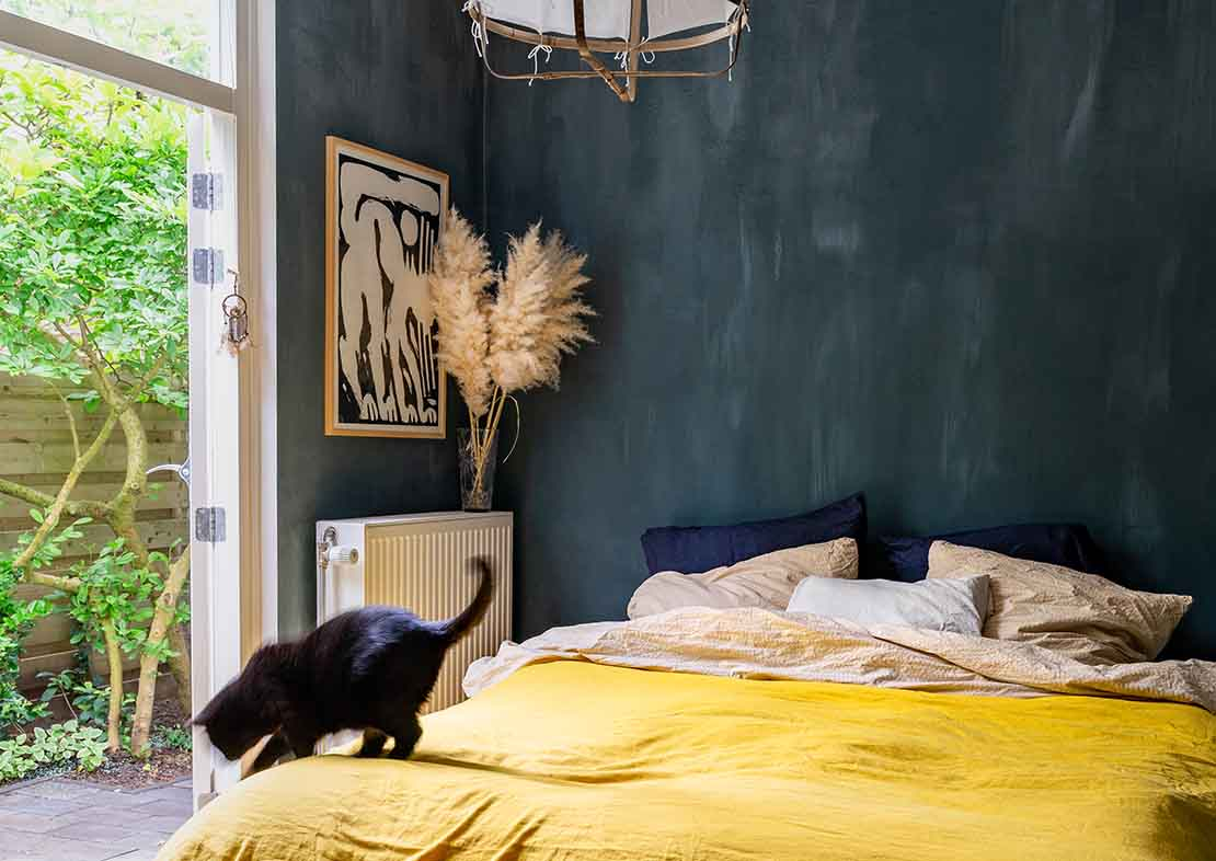 Pure & Original lime paint wall blue and yellow bedroom with black cat
